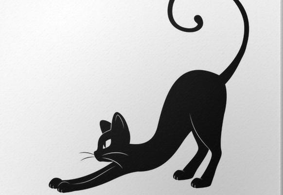 cuadros-en-lienzo-black-cat-silhouette